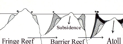subsidence theory relating to coral reefs