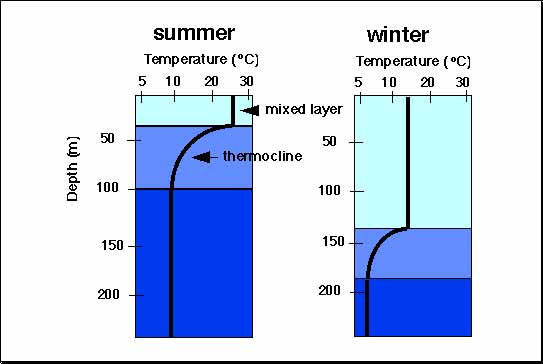 how to find water temperature